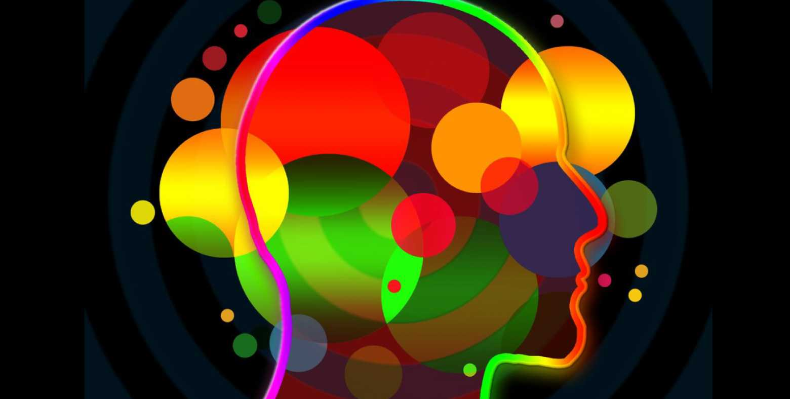 shape of head profile view with colorful circles