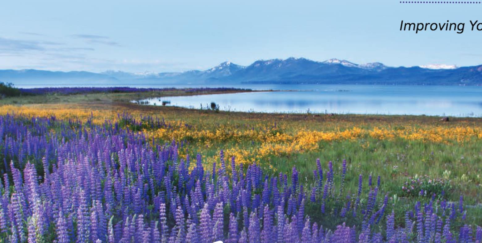 Field of flowers at lake tahoe