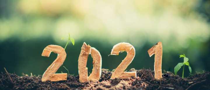 2021 in dirt