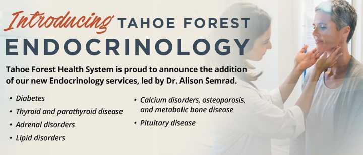 Endocrinology Service Banner