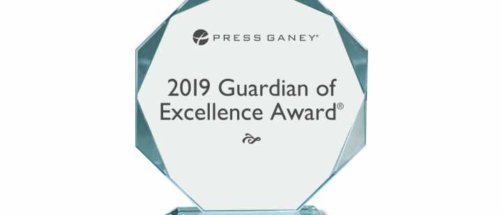 2019 Guardian of Excellence Award Image