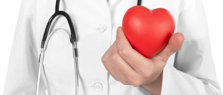 doctor holding heart-shaped stress ball