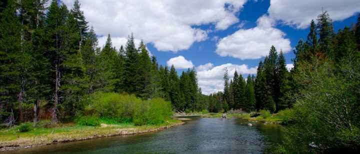 truckee river scene