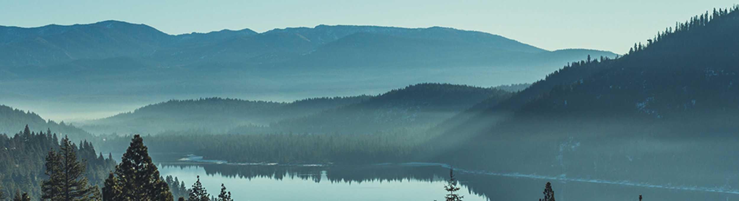 tahoe forest employee wellness programs